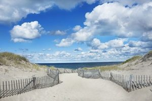 Relax in the Sand on the Scenic Beaches of Cape Cod